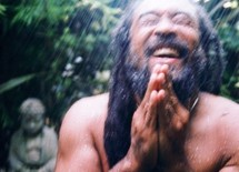 PAROLES DE MOOJI