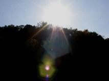 """Sunlit Reflections"" by Violet Maya Burge (copyright)."